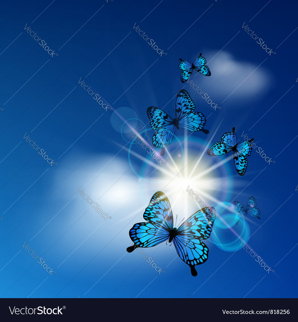 Blue butterflies vector