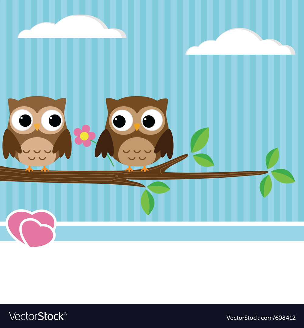 Owl couple vector
