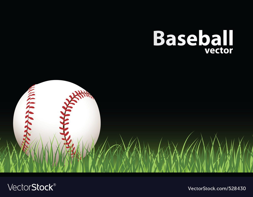 Basball ball vector