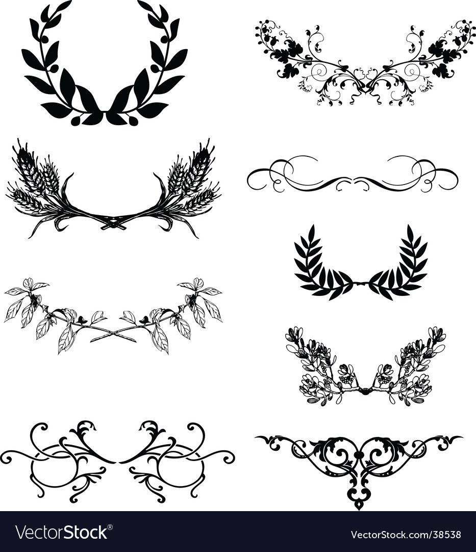Floral frame elements vector