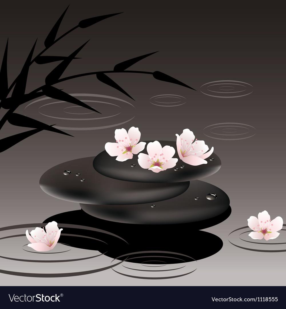 Zen stones and cherry flowers vector