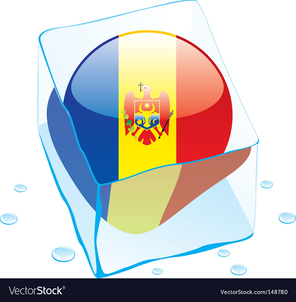 Frozen button flag of moldova vector