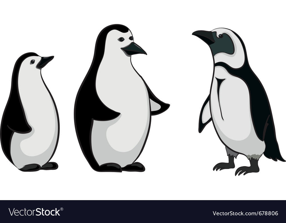 Emperor penguins vector