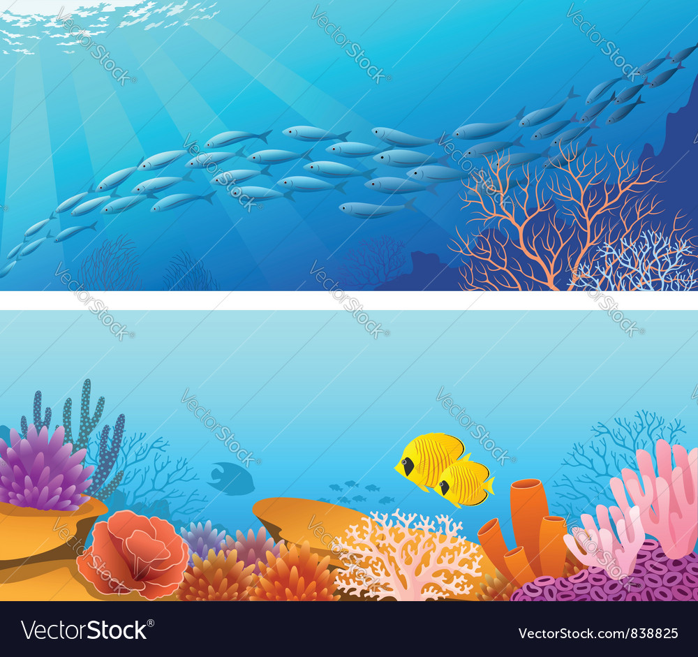 Sea life banners vector