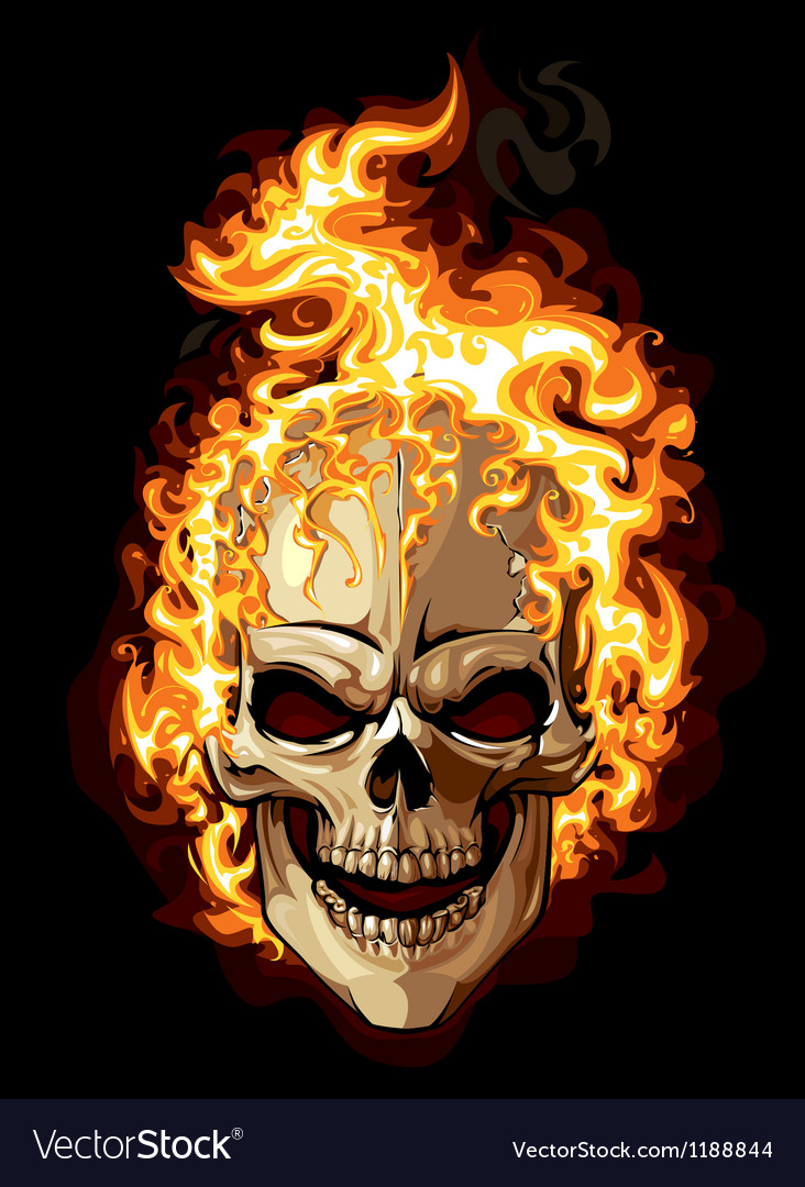 Burning skull on black background vector