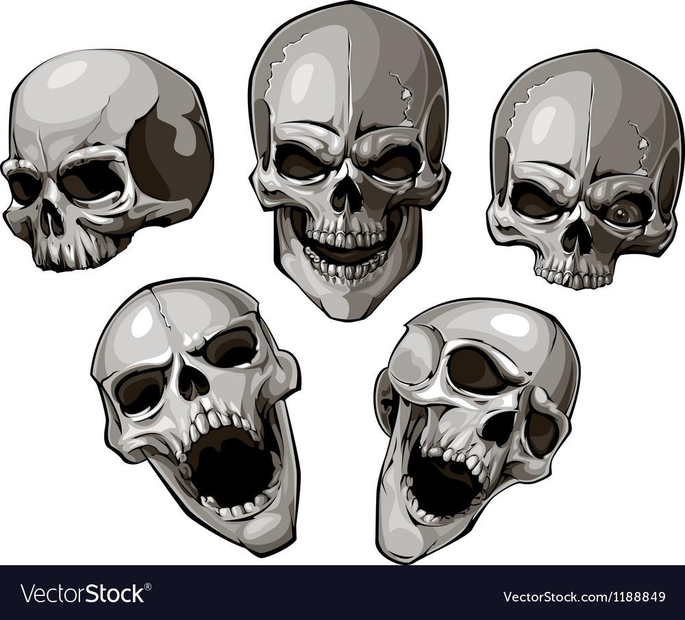Skulls 4 vector