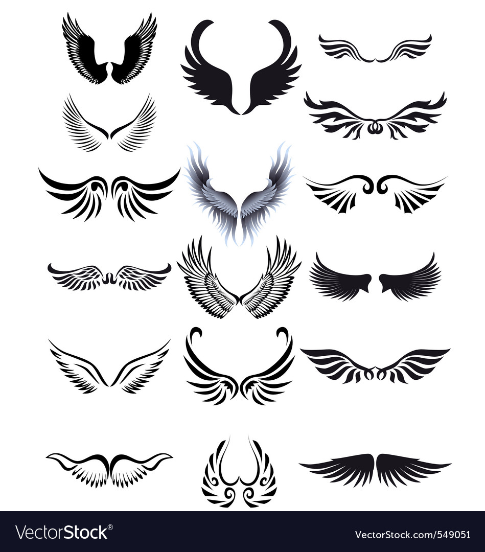 Wings silhouette vector