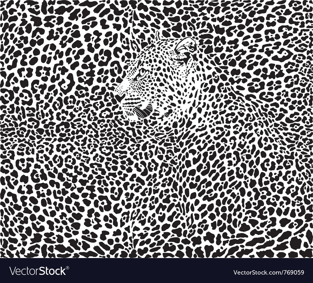 Leopard background vector