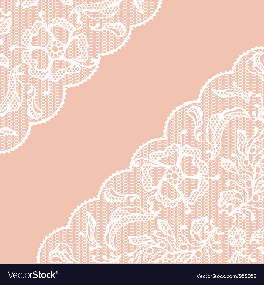 Vintage lace frame ornamental flowers texture vector