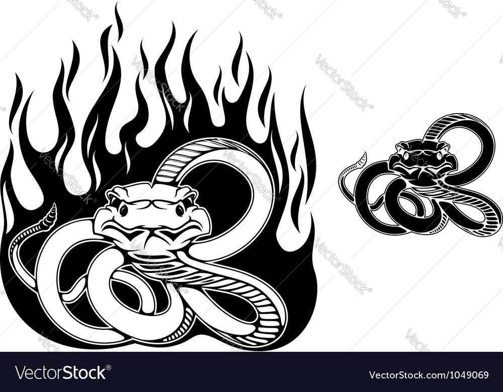 Danger rattlesnake vector