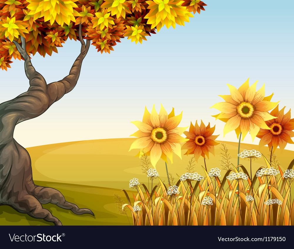 An autumn view with flowers vector