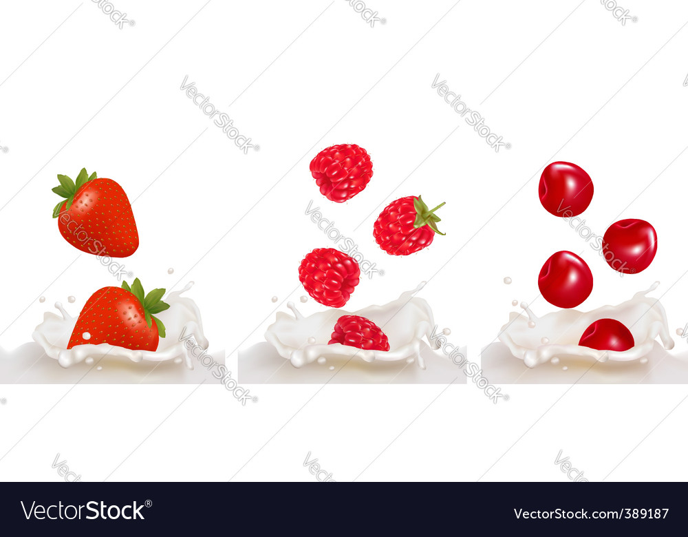 Set with berry and milk vector