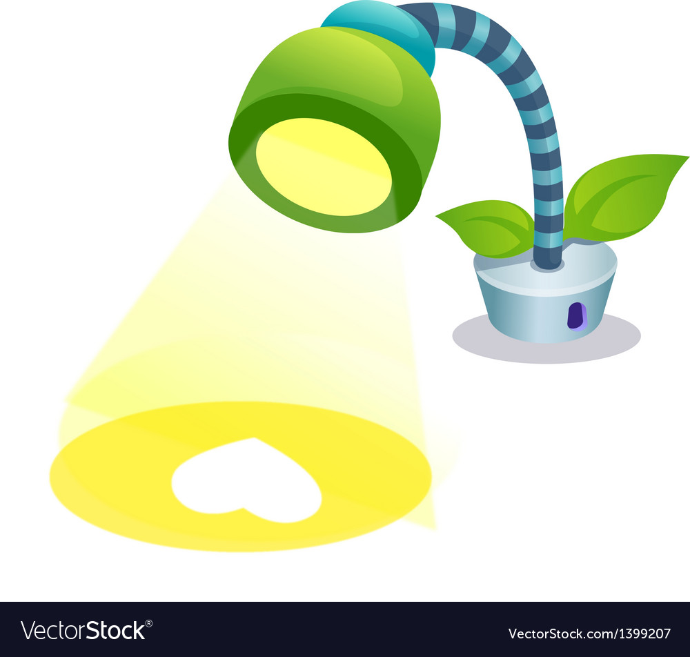A lamp is placed vector