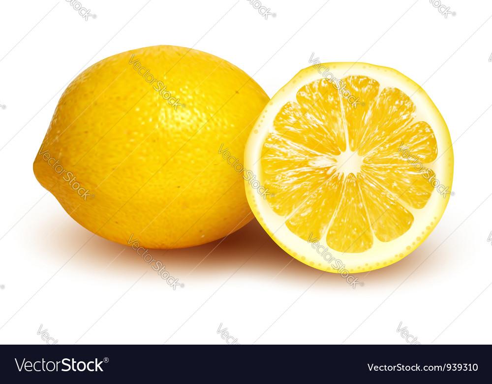 Fresh lemon and lemon slice vector