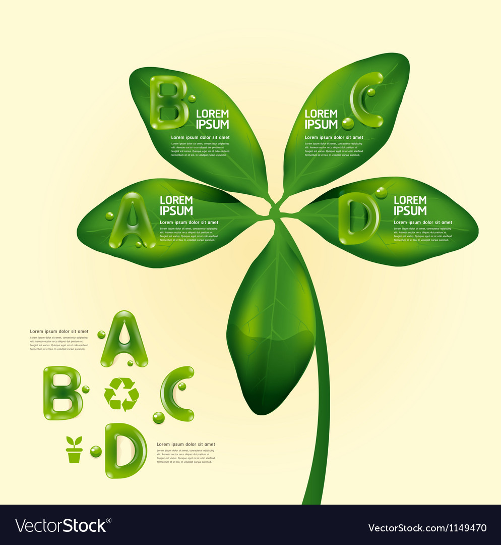 Infographic water drop on leaf nature concept vector