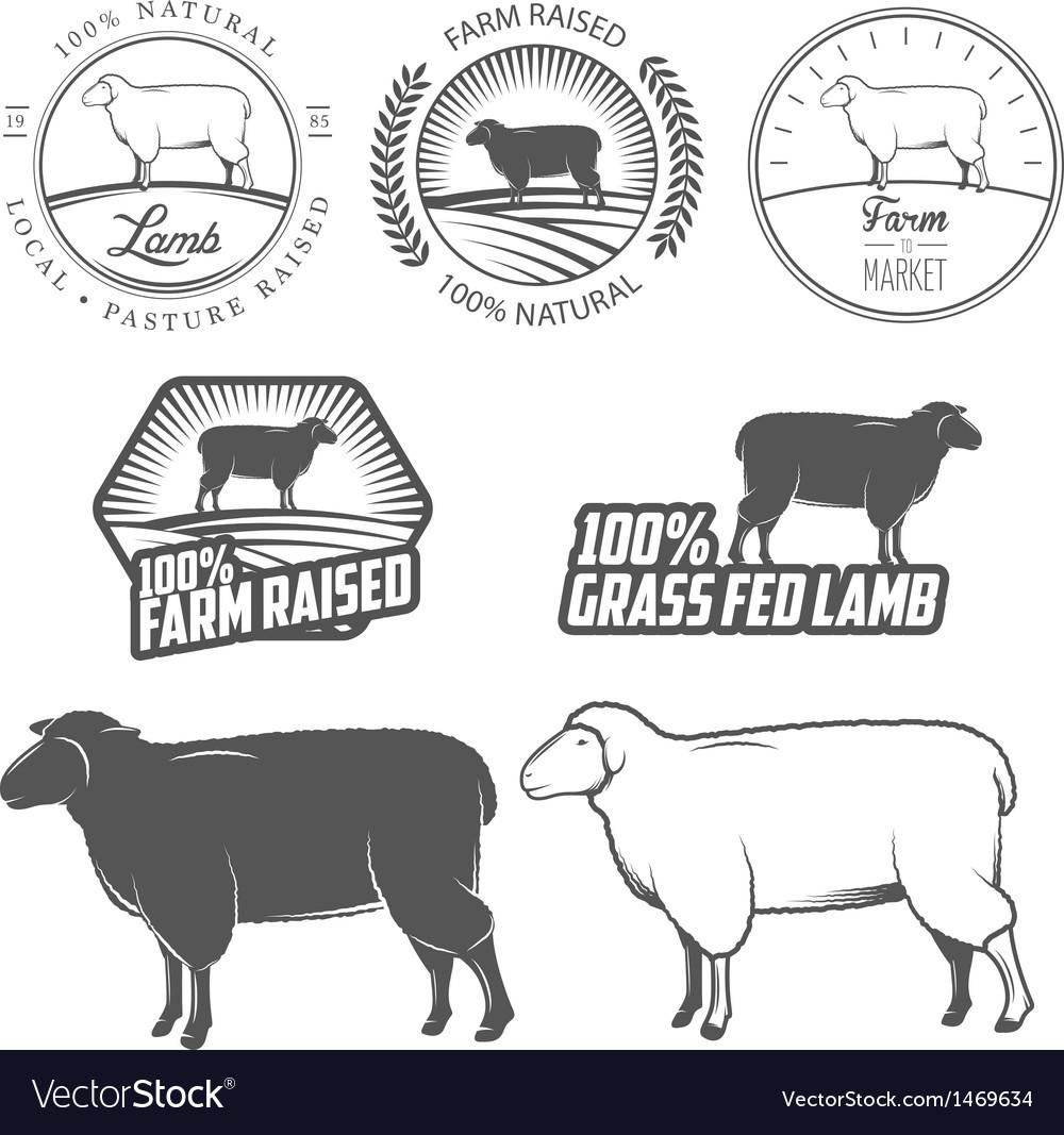 Set of lamb labels badges and design elements vector