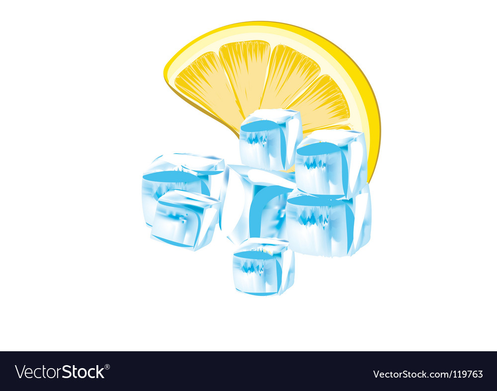 Lemon and ice cubes vector