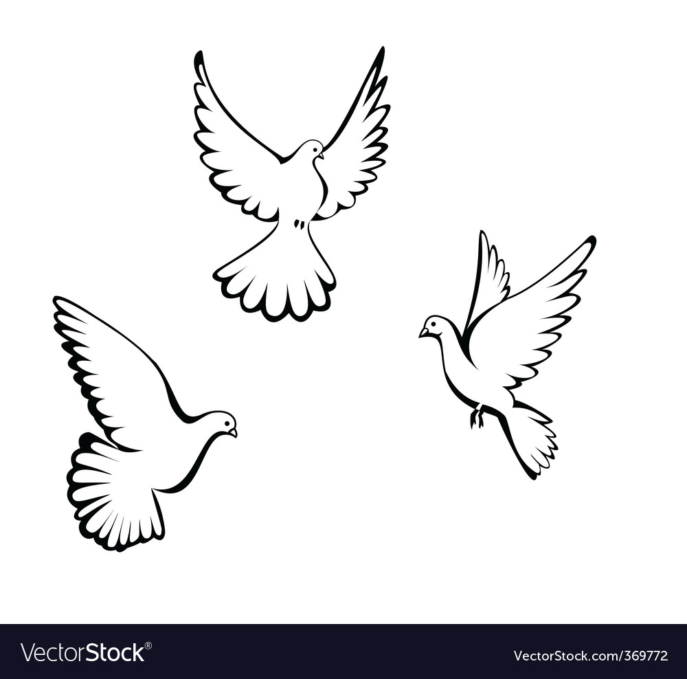 Three dove vector