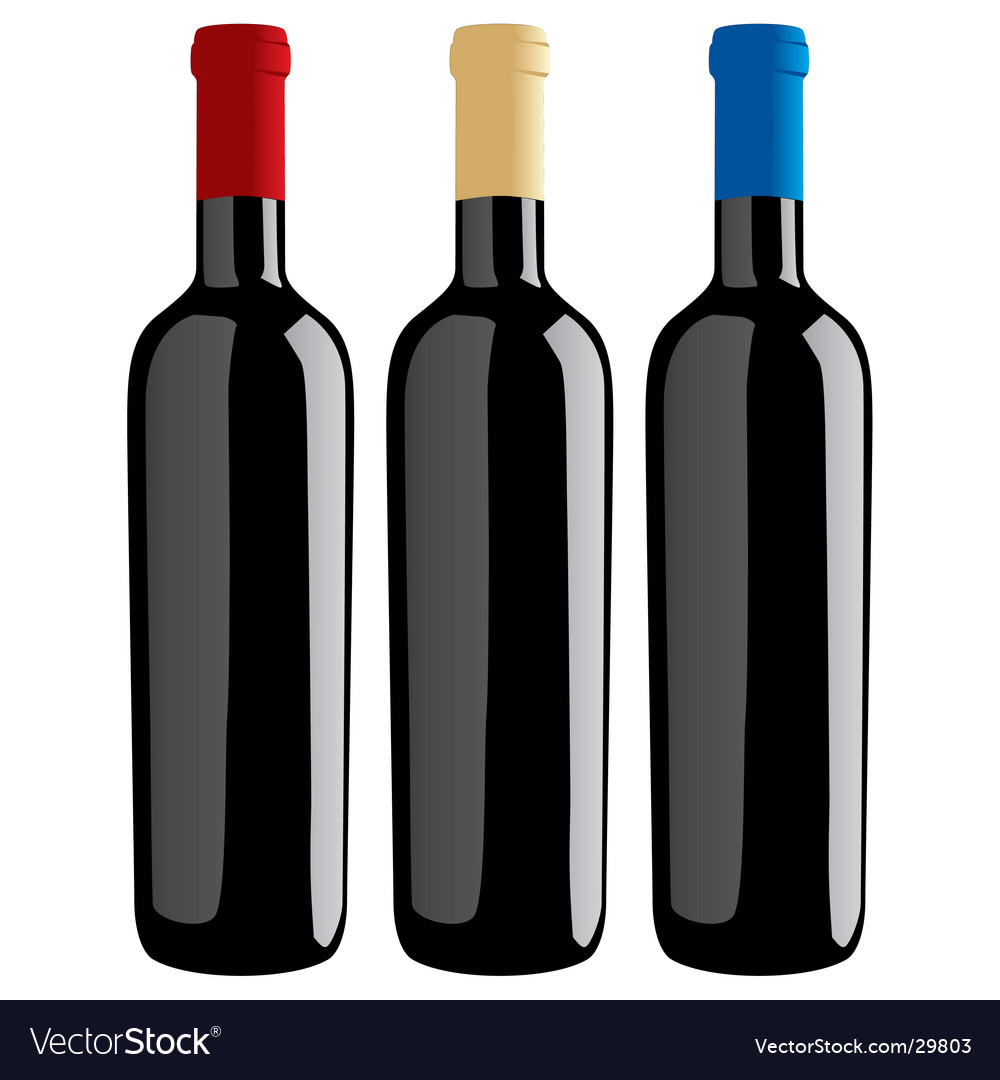 Wine bottles classic shape vector