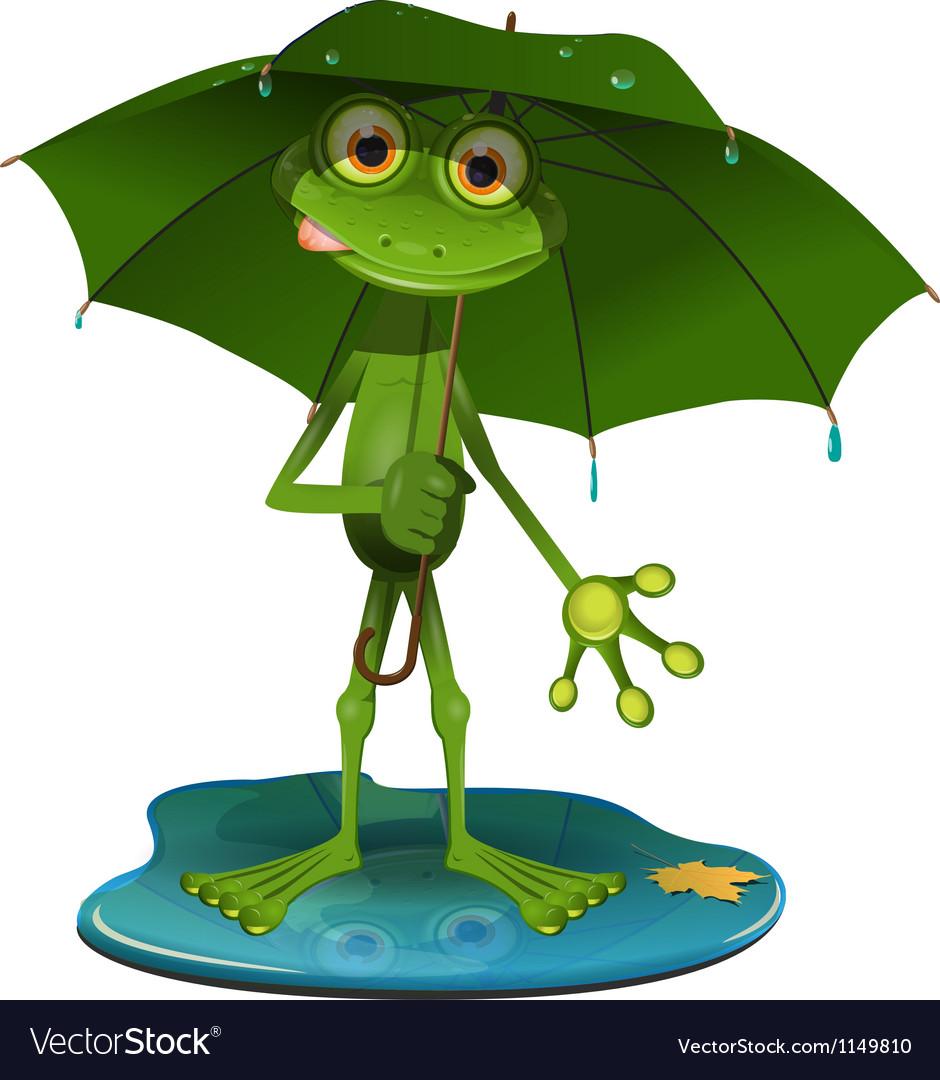 Frog with a green umbrella vector