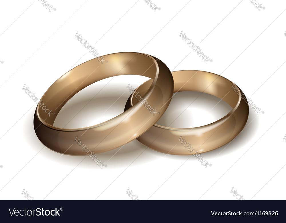 Wedding rings vector