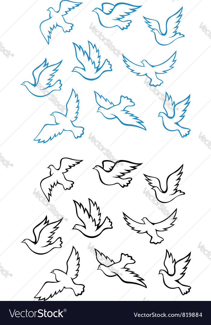 Pigeons doves set vector