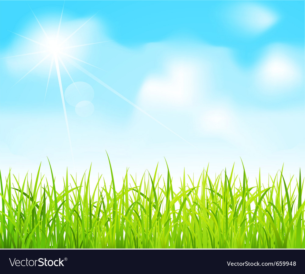 Blue sky and green grass vector