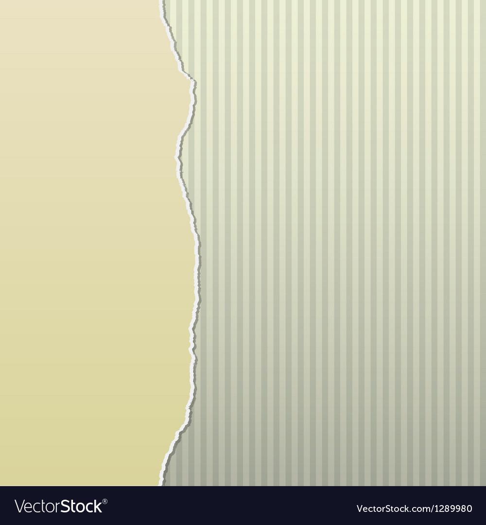 Beige torn paper on stripes side vector