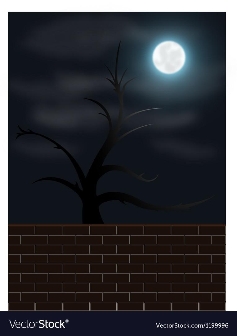 Spooky night scene vector