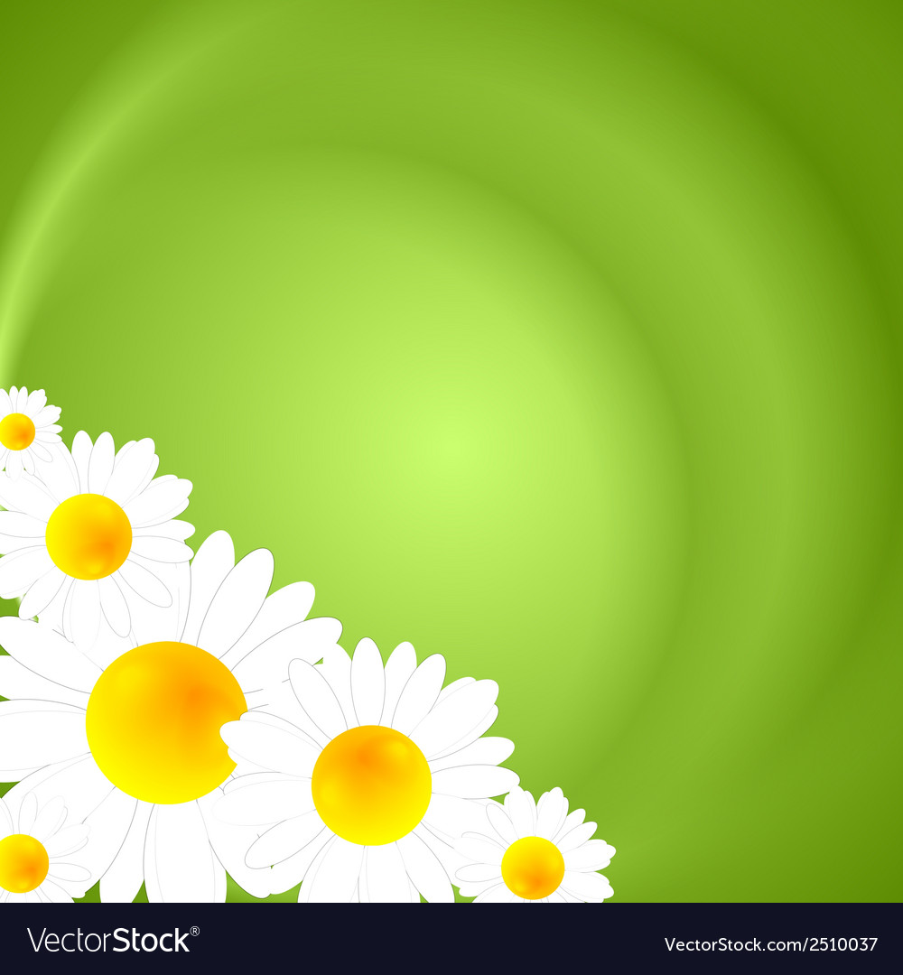 Green summer nature background vector