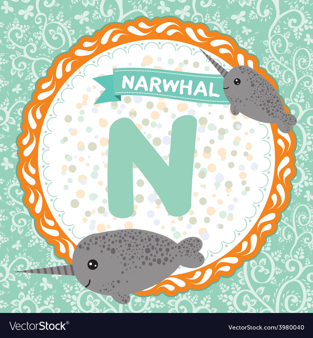 Abc animals n is narwhal childrens english vector
