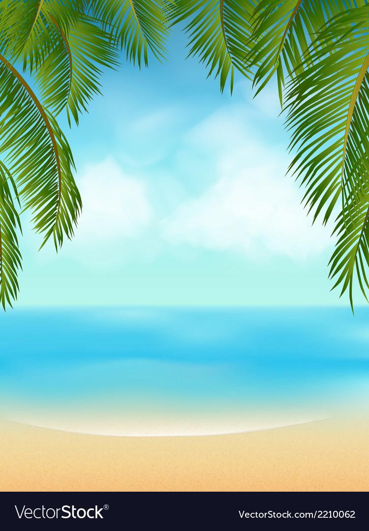 Palm tree tropical beach vector