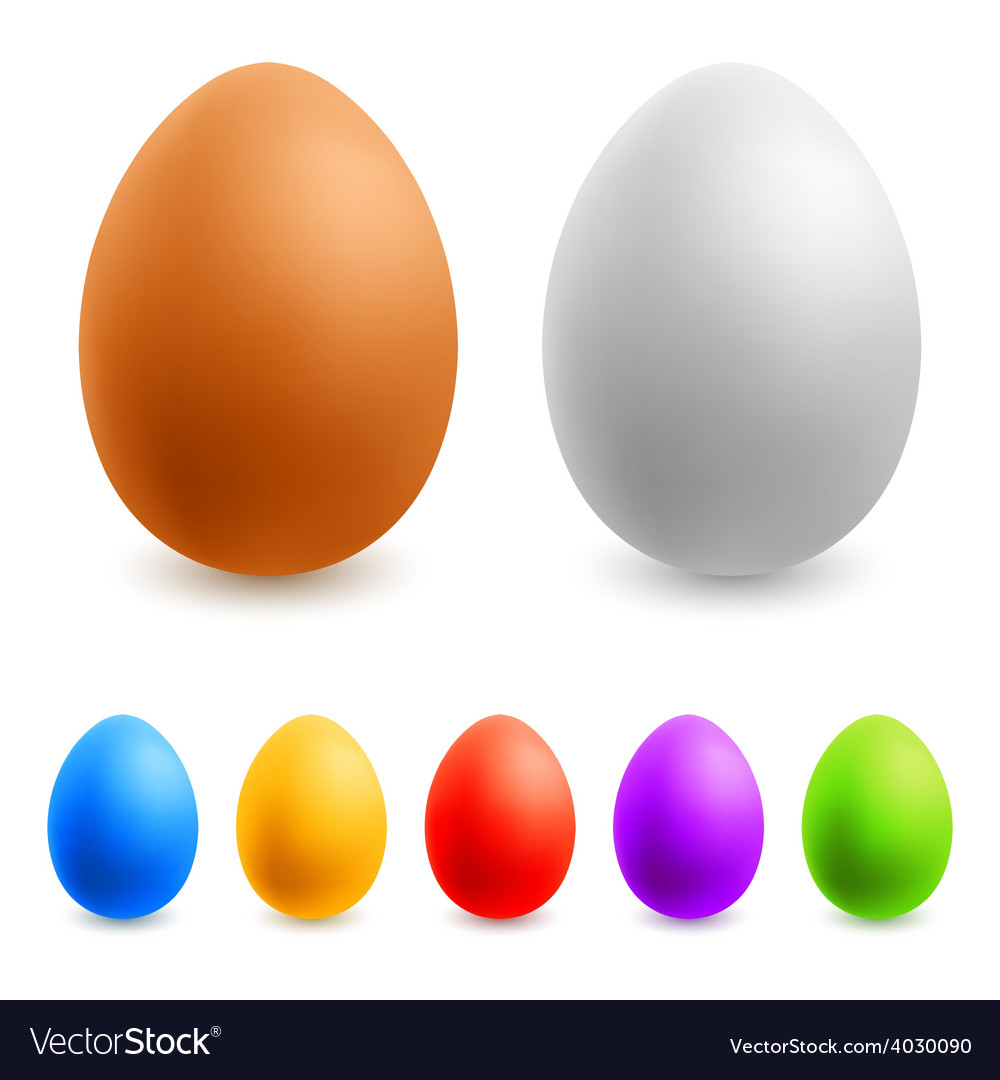 Color easter eggs vector