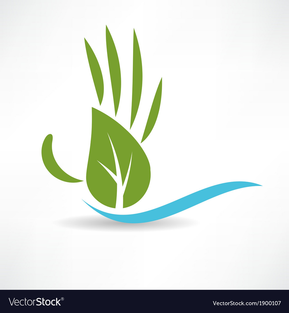 Ecological wood and water icon vector