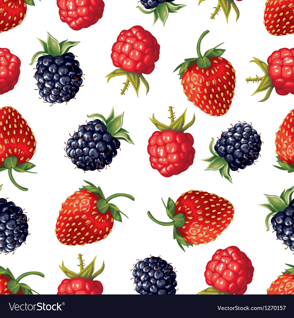 Berry pattern vector