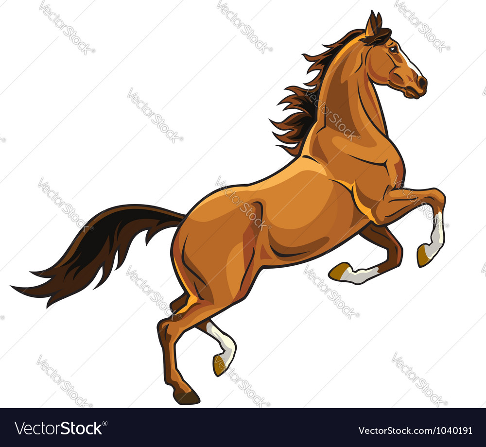 Rearing brown horse vector