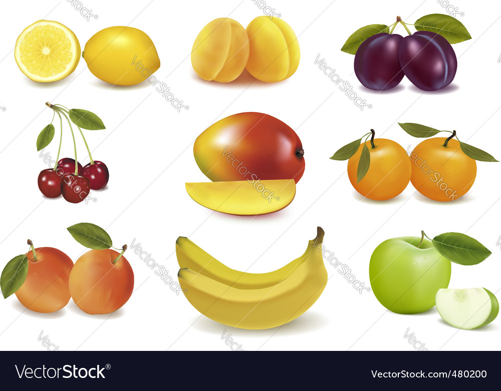 Group with apples and fruits vector