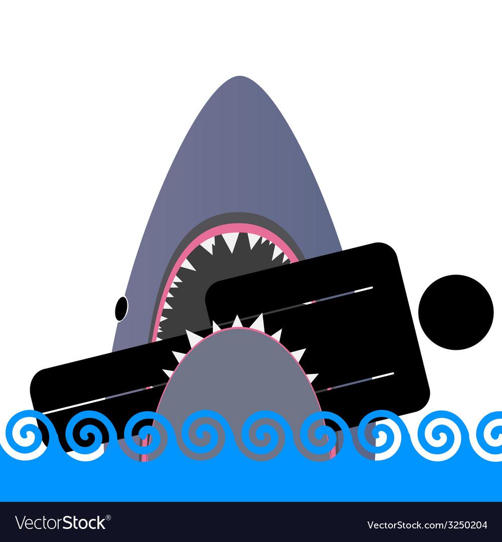 Shark icon color vector