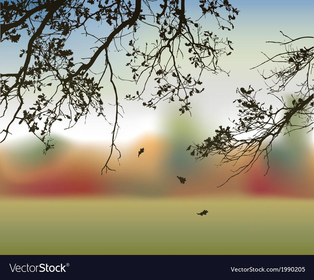 Autumn oak vector