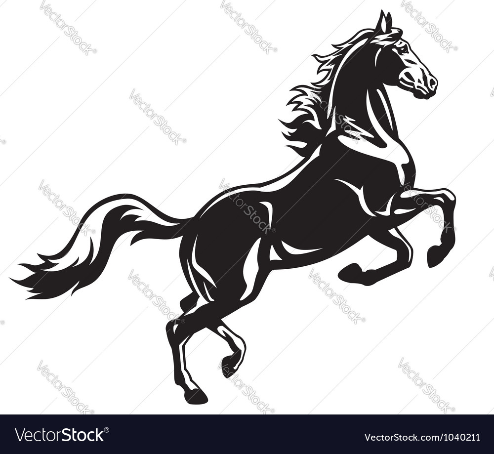 Rearing horse black white vector