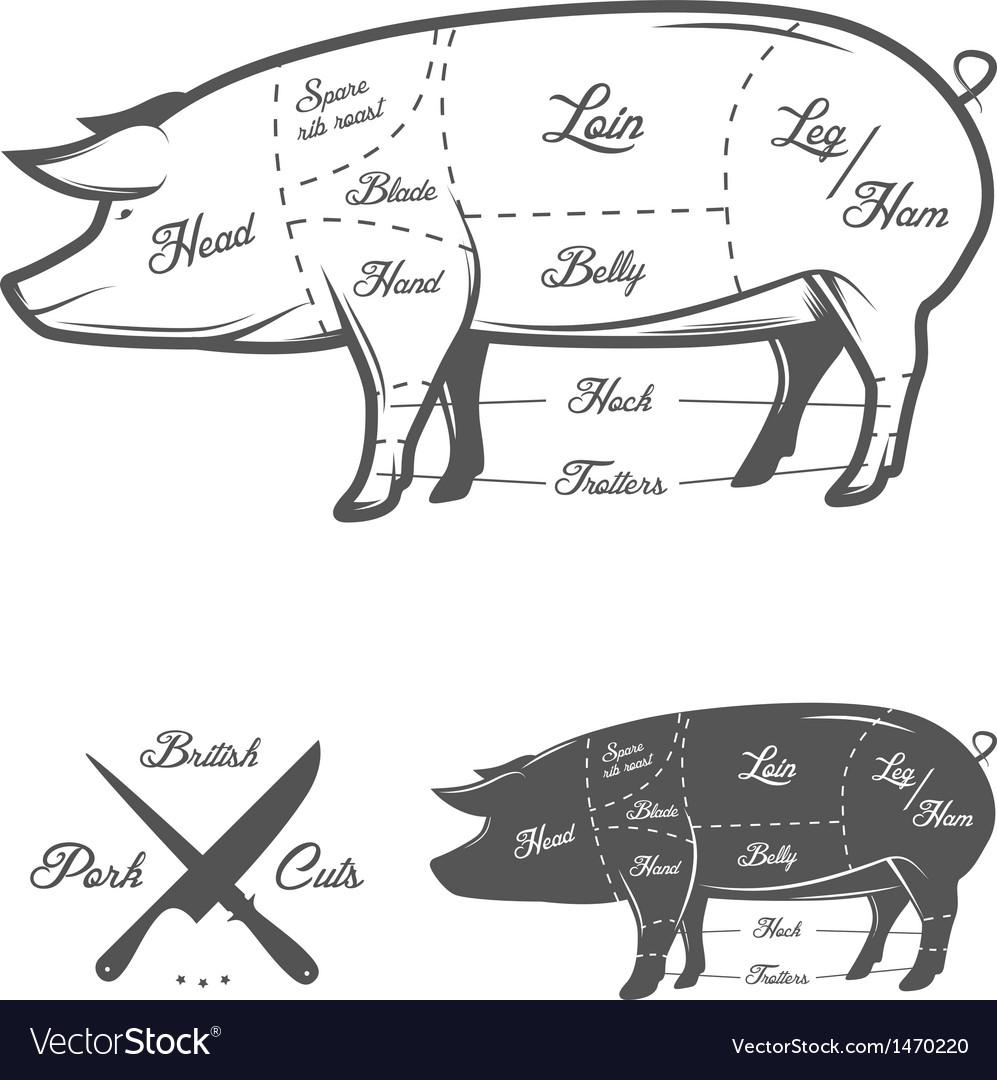British uk cuts of pork vector
