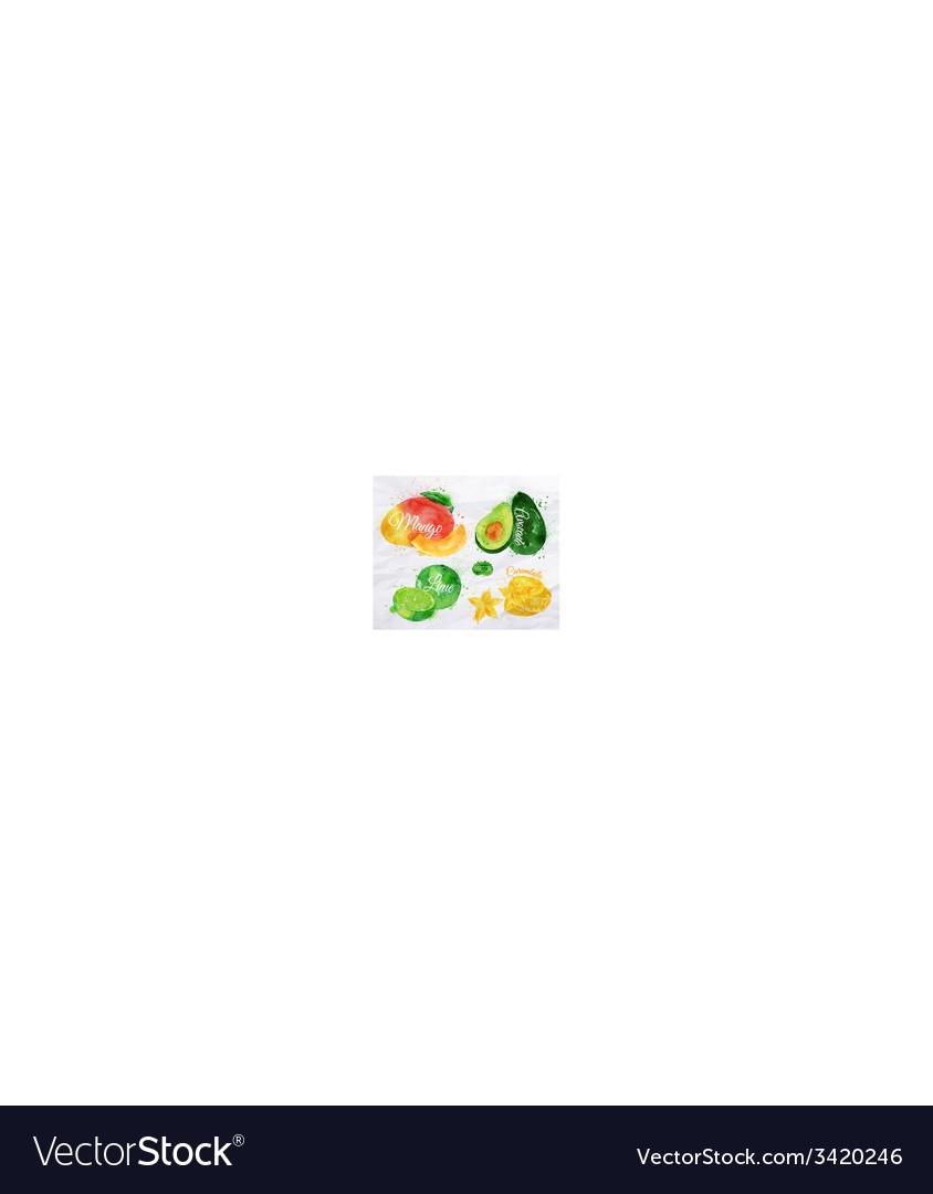 Exotic fruit watercolor mango avocado carambola vector