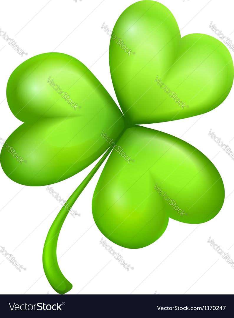 Leaf of green clover vector