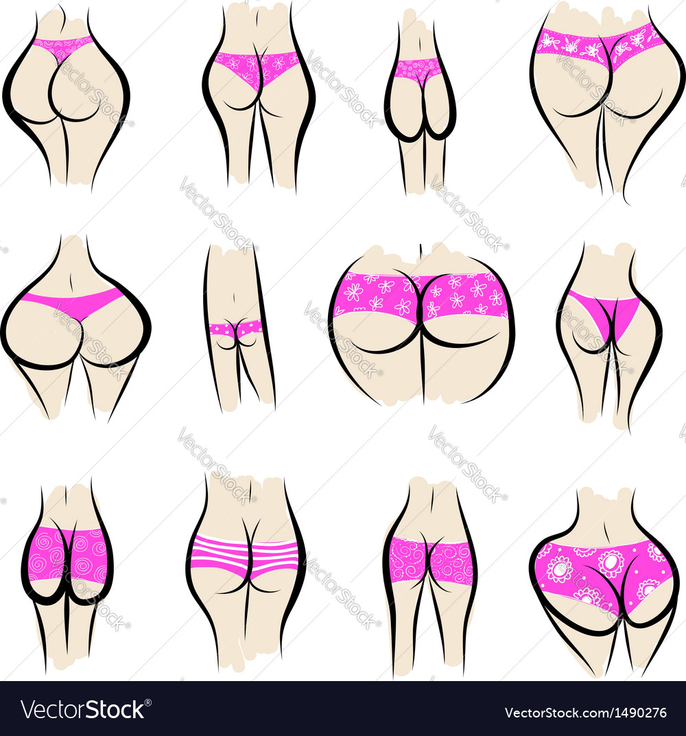 Collection of sexy female buttocks in panties vector