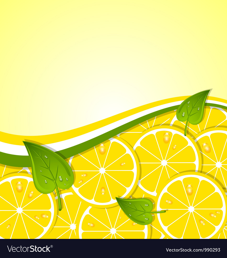 Lemon slices template vector