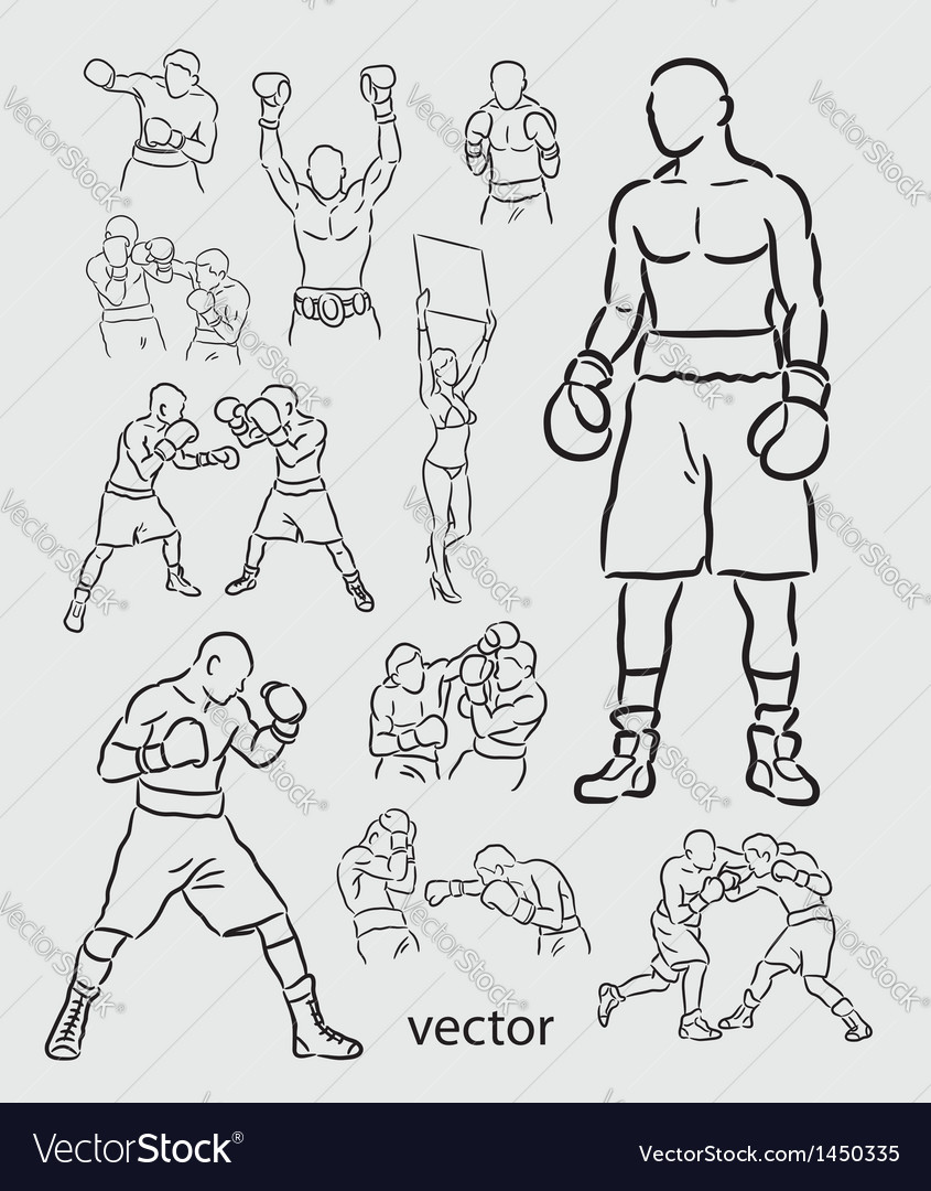 Boxing sketches vector