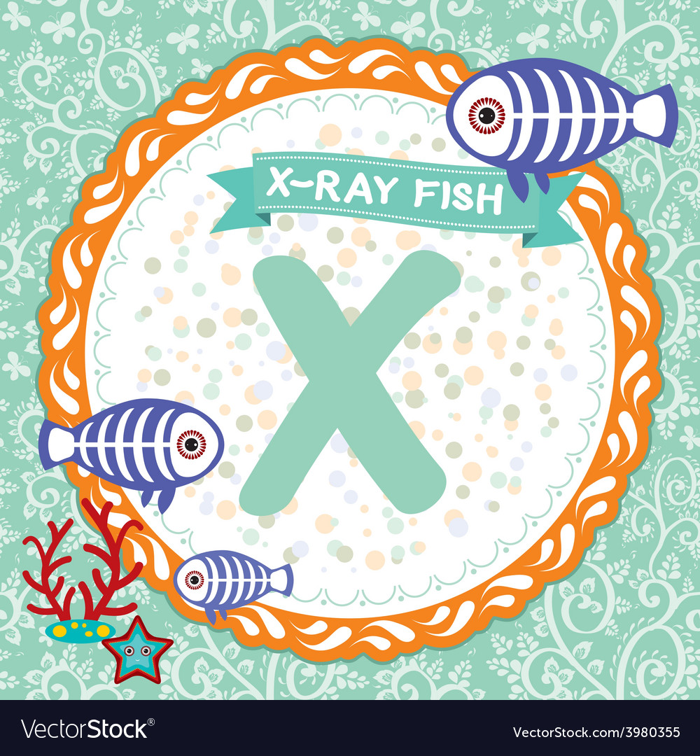 Abc animals x is x-ray fish childrens english vector