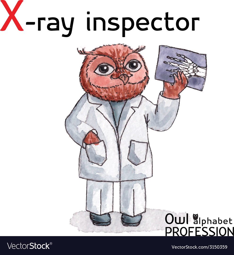 Alphabet professions owl letter x - x-ray vector