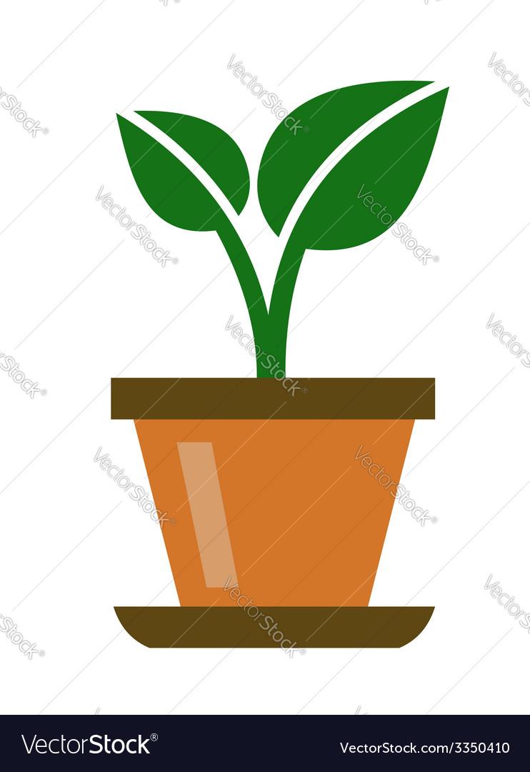 Green organic plant vector