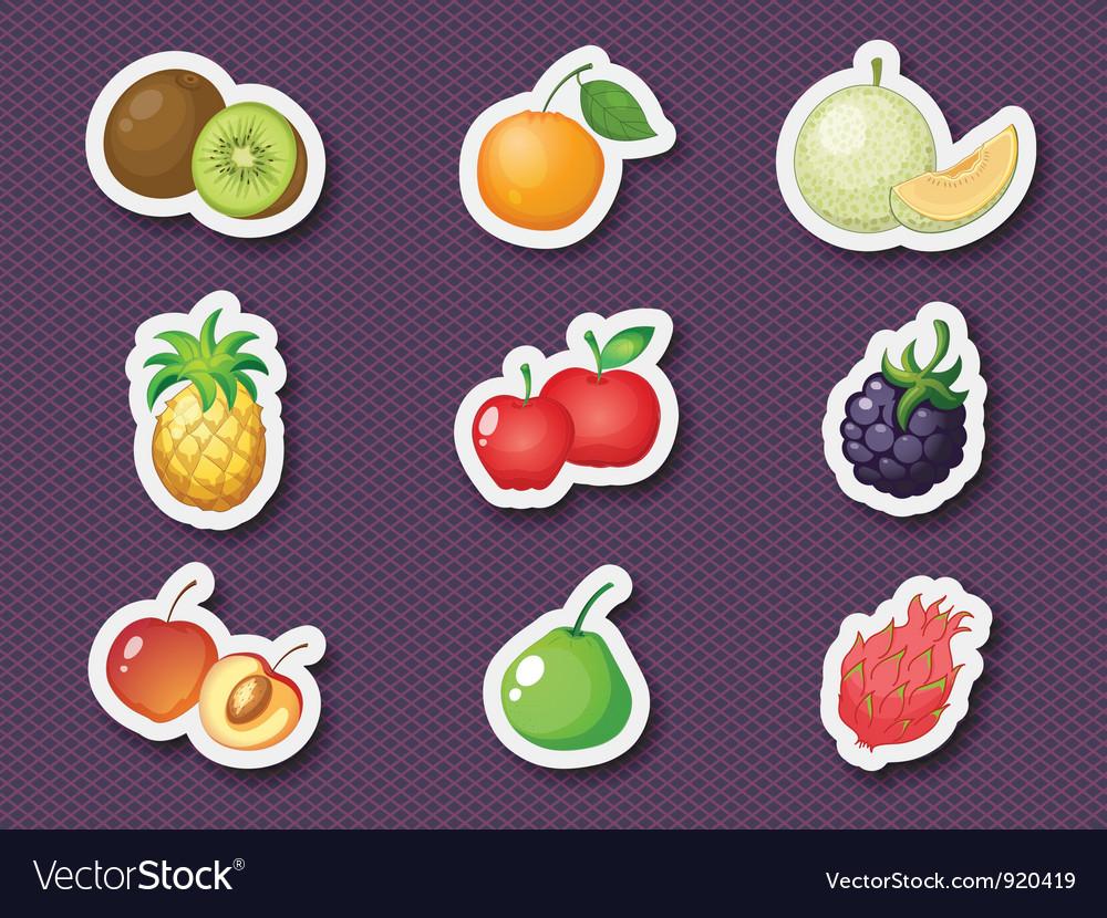 Mixed fruit vector
